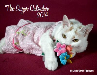 sugarcalendarfront2014